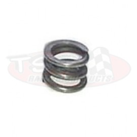 Powerglide Servo Apply Cushion Spring APG-28823